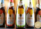 European-Beer-Challenge-2020-Winners-20